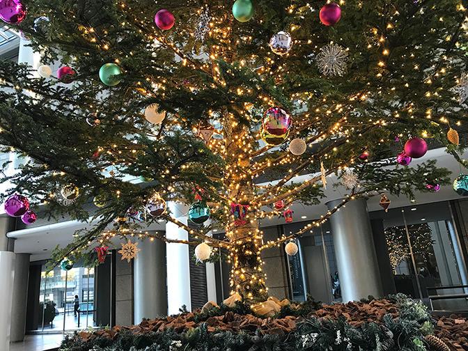 クリスマスツリー、お披露目までの舞台裏