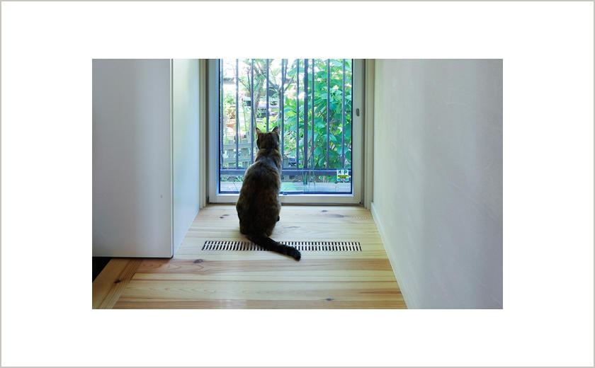 犬猫と暮らす快適な住まい